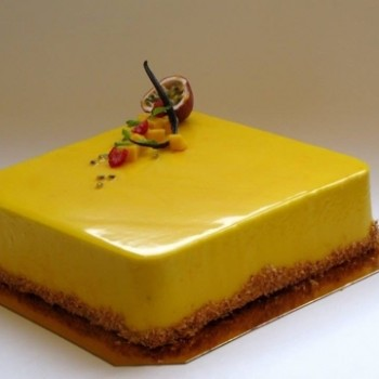 Tort-Gr----5